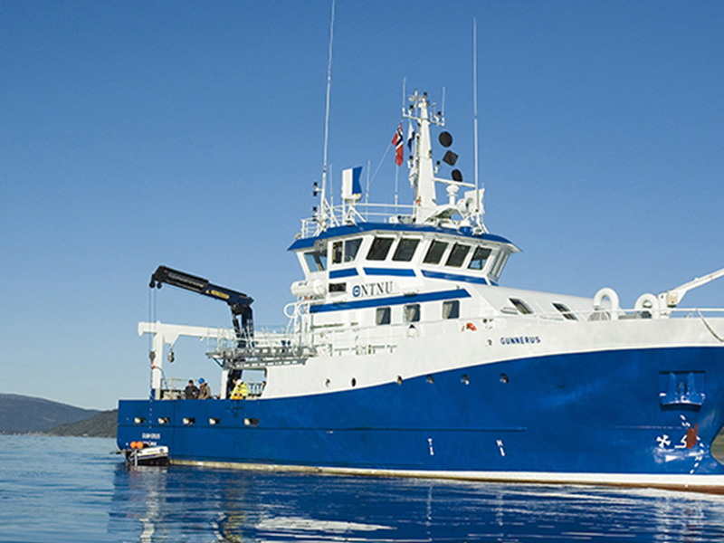 Blue Marine Services
